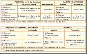 Tabela de vacinas para equinos